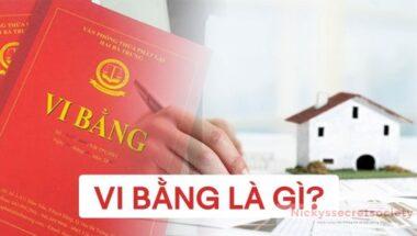 vi-bang-la-gi
