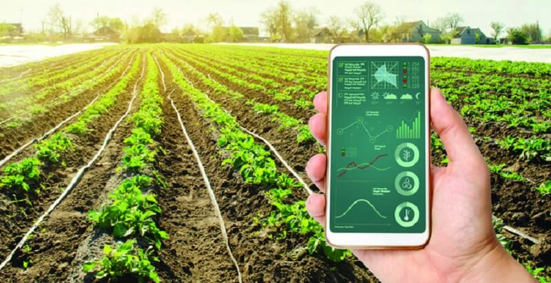 Nông nghiệp công nghệ cao là gì? Triển vọng của ngành nông nghiệp công nghệ cao