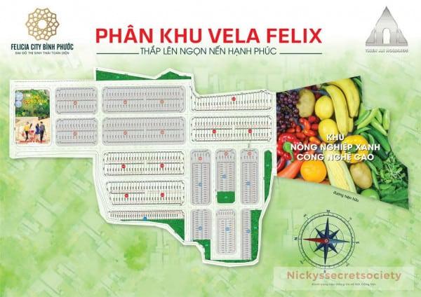 Phan-khu-Vela-Felix-Du-An-Felicia-City-Binh-Phuoc.jpeg